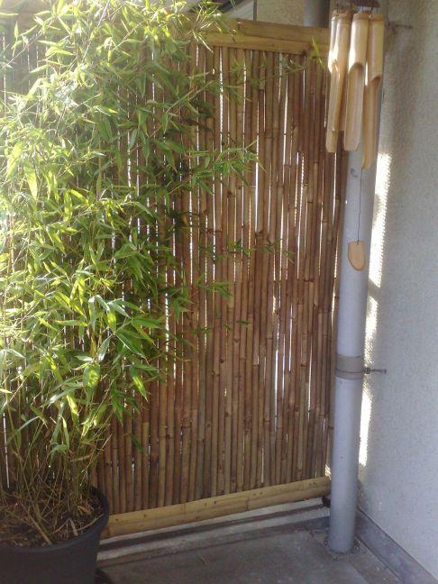 bamboe tuin scherm flora